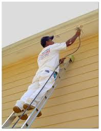 painting a house diy vs professional house painting tips