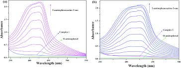 importance of c u2013h π interactions in stabilizing the syn anti