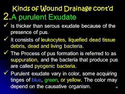 What Is Dead Tissue Called Wound Care And Dressing Ppt Video Online Download