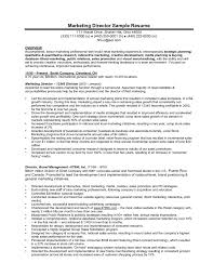 It Manager Resume Example by Doc 691833 Marketing Manager Resume Free Resume Samples