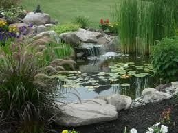 what is the average pond size premier ponds