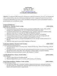 information technology professional resume information technology specialist resume video 100 resume for