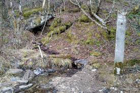 Shining Rock Wilderness Map Shining Rock Wilderness Loop U2022 C C Hikes