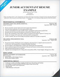 resume format for accountant documents accounting resume sles artemushka com