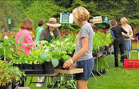 Botanical Gardens Ubc by News U0026 Events Ubc Botanical Garden