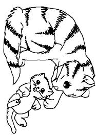 chaton 42 animaux u2013 coloriages à imprimer