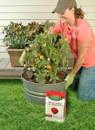 organic 3 lb granular blood meal fertilizer packaging design