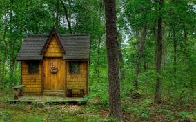 Small Cabin House by Small Cabin In The Forest Walldevil