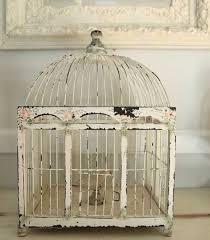 best 25 antique bird cages ideas on bird cage cage