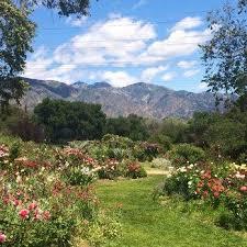 descanso gardens wedding descanso gardens wedding venue