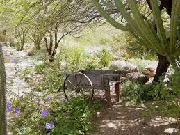 desert landscape design inspiration u2014 home landscapings