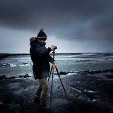 Interior Crocodile Alligator Find The Best Photographers Around The World