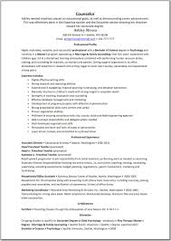Sample Resume Youth Counselor by Ymca Counselor Cover Letter Executive Summary Outline Examples