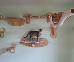 cat wall furniture wall mounted cat playground furniture gearnova