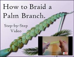 palm sunday palms for sale how to braid a palm on palm sunday catholic inspired