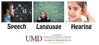 department of communication sciences and disorders college of