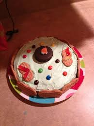 animal cell cake project ideas 28 images edible animal cell