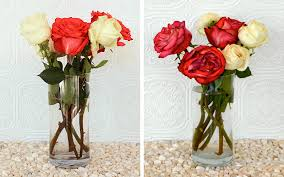 Bouquet Of Flowers In Vase How To Keep Roses Alive More Com