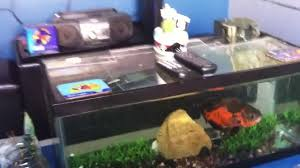 fish tank coffee table diy diy coffee table fish tank youtube