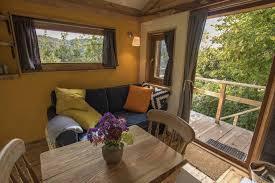 mistletoe treehouse canopy u0026 stars