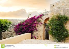 flowers home wall stock photos images u0026 pictures 15 260 images