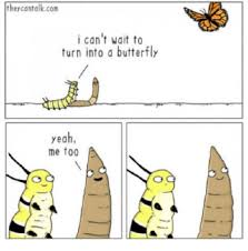German Butterfly Meme - theycantalkcom i can t wait to turn into a butterfly yeah me too