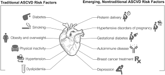 cardiovascular disease in women circulation research