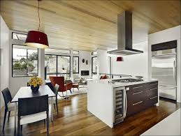 Grey Wood Floors Kitchen by Kitchen Dark Kitchen Cabinets With Dark Wood Floors Pictures
