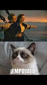 Titanic Funny Memes - grumpy cat titanic pinteres