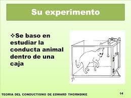 conductismo animal teorías del conductismo de edward thorndike ppt video online descargar