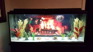 Petsmart Christmas Aquarium Decorations by 100 Christmas Fish Tank Decorations Best 25 Fish Tanks