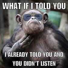 Monkey Meme - 15 hilarious monkey memes to brighten your day i can has cheezburger