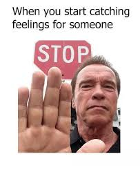 Catching Feelings Meme - when you start catching feelings for someone stop funny meme on