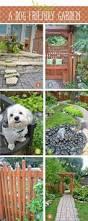 108 best dog yard images on pinterest backyard ideas dog