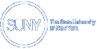 the voluntary defined contribution program new york state