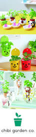 Best Office Desk Plants 29 Best Chibi Garden Co Shop Images On Pinterest Chibi Shop At