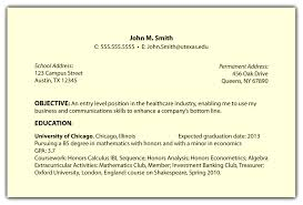 summary statement for resume examples cover letter objective examples in a resume examples of an cover letter sample of objective for resume summary statement examples example pwuxcqxzobjective examples in a resume