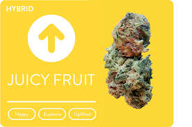 the juicy fruit strain of cannabis