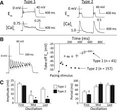 nonequilibrium reactivation of na current drives early