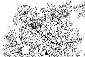 coloring page summer parrot 6