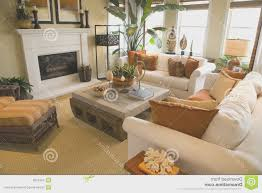 living room simple living room photography design ideas luxury