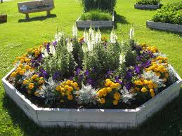 flower garden plans layout landscape design