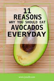 11 reasons why you should eat avocados everyday yessfit