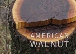 palladio wide plank hardwood flooring