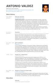 General Resume Samples by Director General Resume Samples Visualcv Resume Samples Database