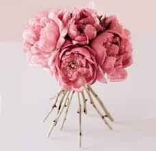 Peonies Bouquet Peonies Peony Flowers And Flower