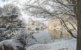 winter in missouri botanical garden walldevil