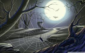 spider web full moon hallowmas halloween hd desktop wallpaper