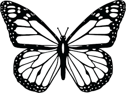 articles with butterfly coloring pictures for adults tag