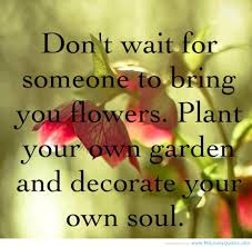 quotes about beauty short wanting quotes flowers